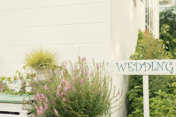 Priestory na svadobnú hostinu